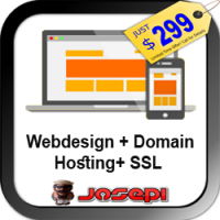 WEB DESIGN - BUSINESS PRO Website from Scratch