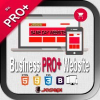 WEB DESIGN - BUSINESS *PRO PLUS* Website with Ecommerce Store  - This is Everything you need