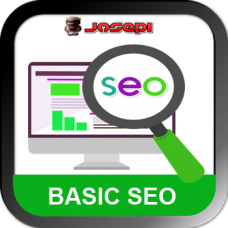 SEO SERVICE - AFFORDALE WEBSITE OPTIMIZATION- Basic Plan