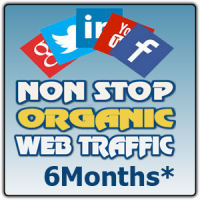 60K US Organic Visitor during 180 Days